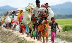 বিশ্বে শরণার্থীদের ৭০ শতাংশ পাঁচ দেশের